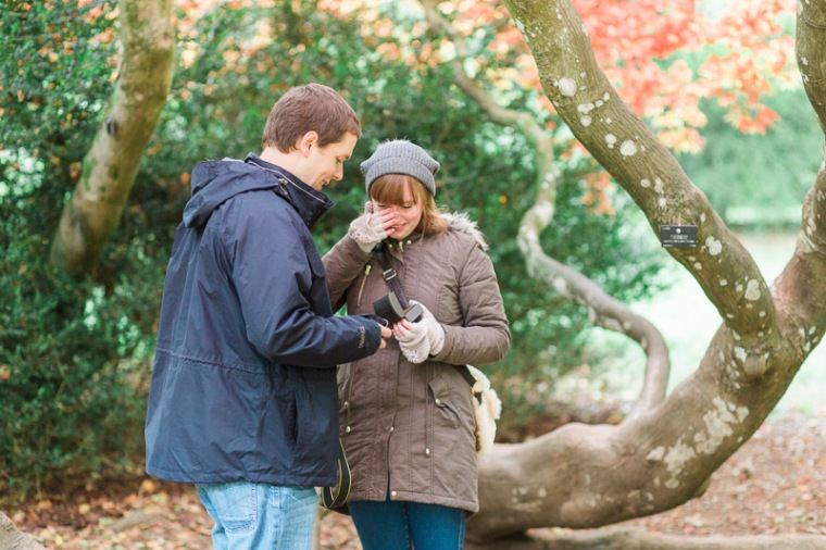 westonbirt-arboretum-proposal-engagement-photographer-annie-crossman-18