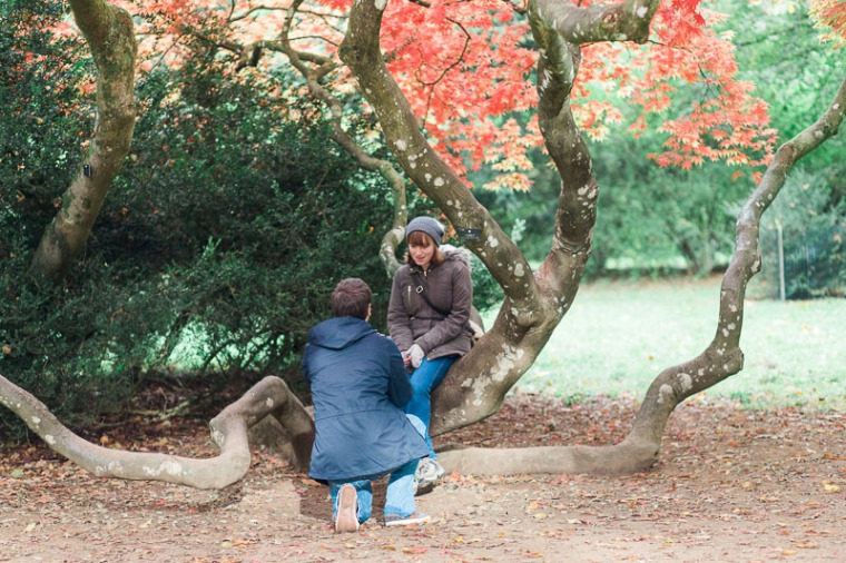westonbirt-arboretum-proposal-engagement-photographer-annie-crossman-6