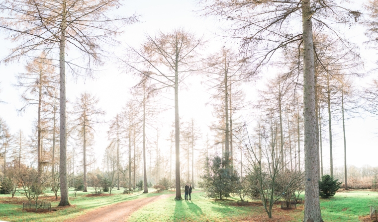 Westonbirt Arboretum Proposal Engagement Photos Bristol Annie Crossman Photography-098